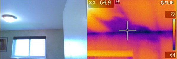 Side by side comparison of what a normal camera can see, and what an infrared camera can see.