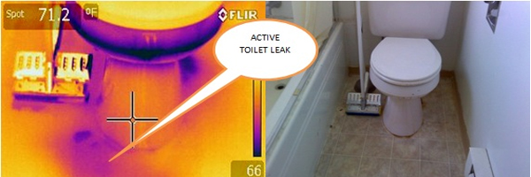 Infrared image example of a toliet leak.